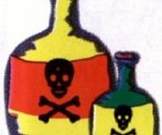 A Características de los Hongos Tóxicos